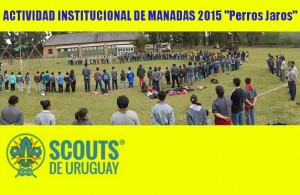 Actividad Institucional de Manadas SDU 2015 - Perros Jaros